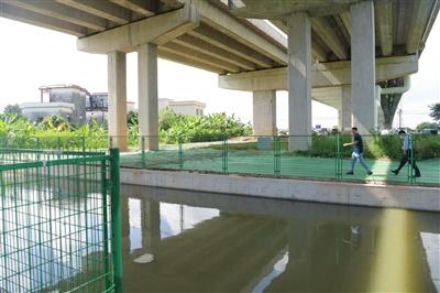 桥下引流收集 桥面雨污入池